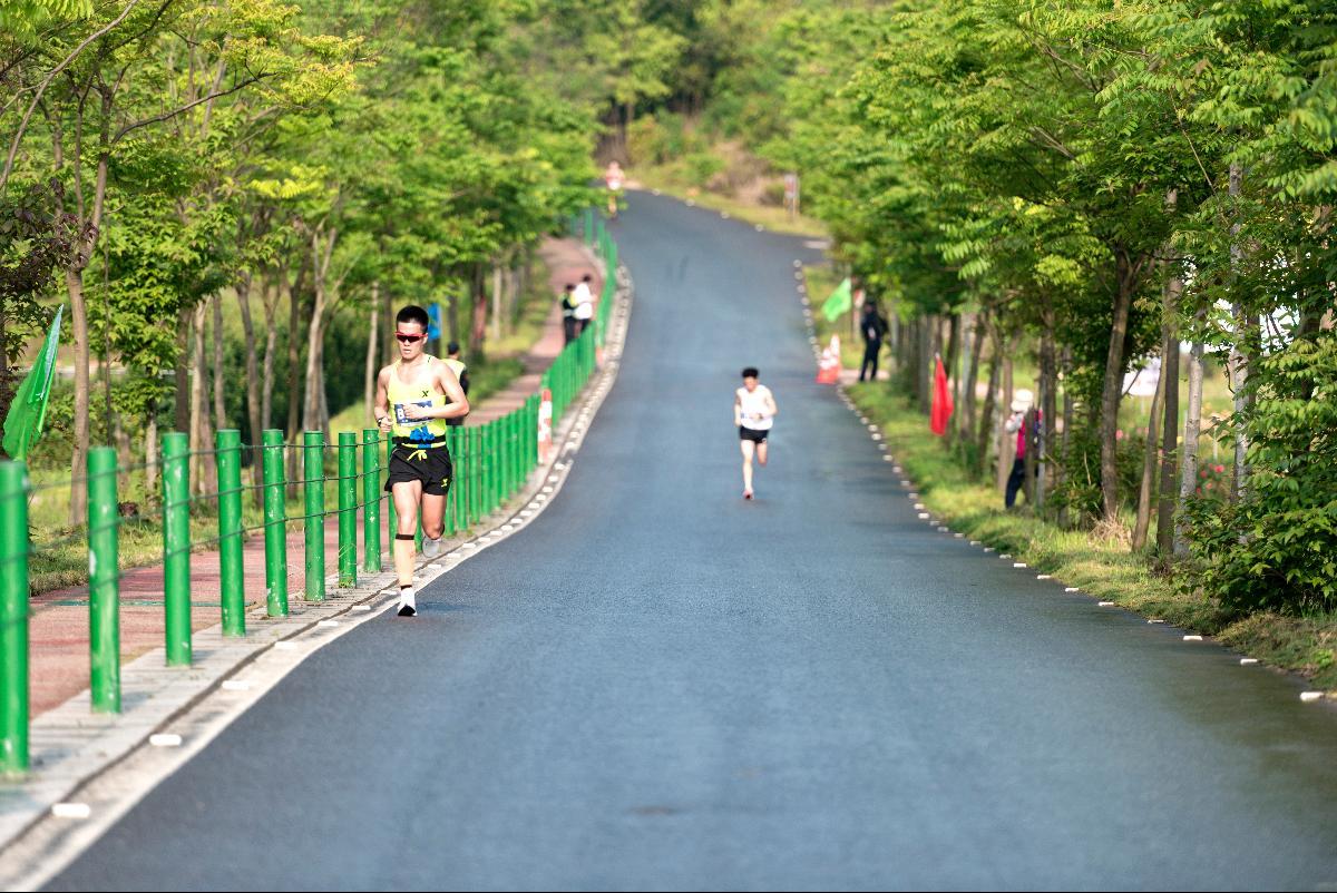 2019金东绿道·浙江马拉松团体赛